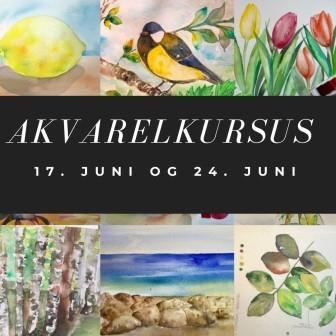 Sommerkursus akvarelkursus malekursus i København